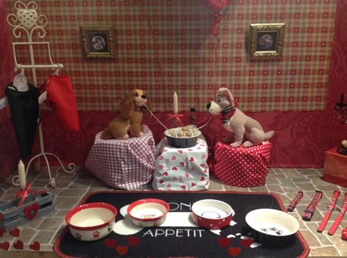 worth valley pet store haworth keighley animal food and